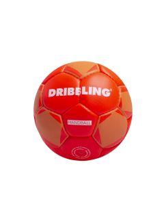 Pelota Dribbling Handball