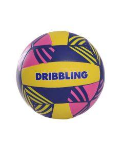 Pelota Dribbling Tricolor 2.0
